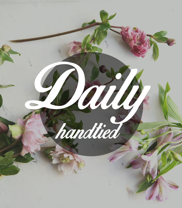 Daily Handtied
