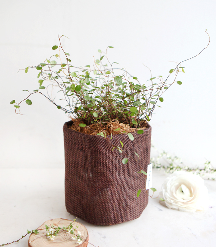 trian vintage fabric pot